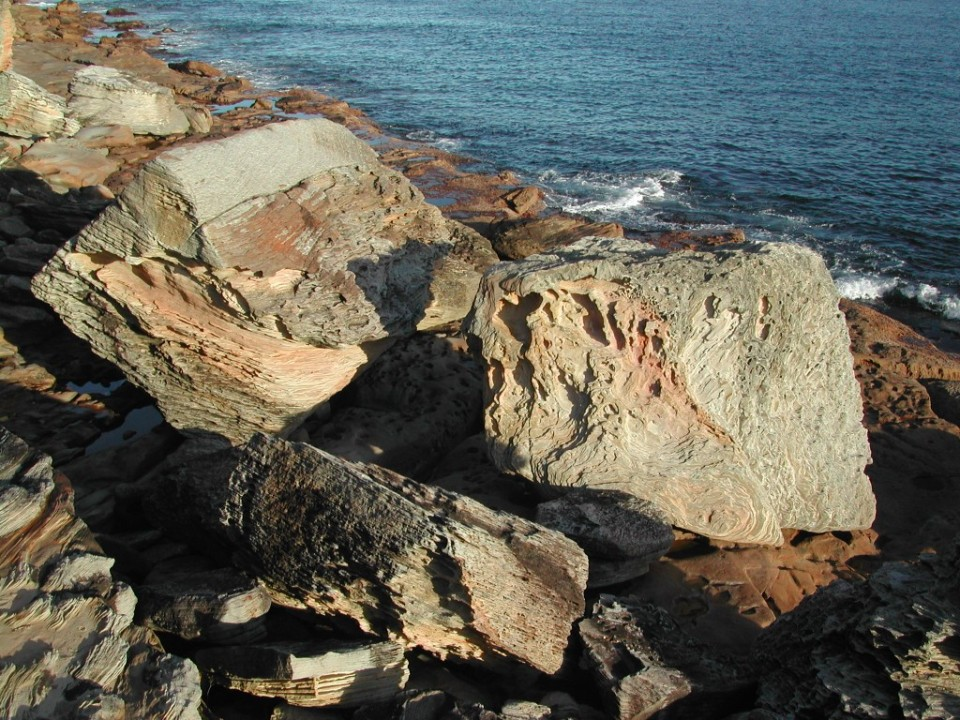 Weathered sandstone rocks Malabar Headland southshoreline